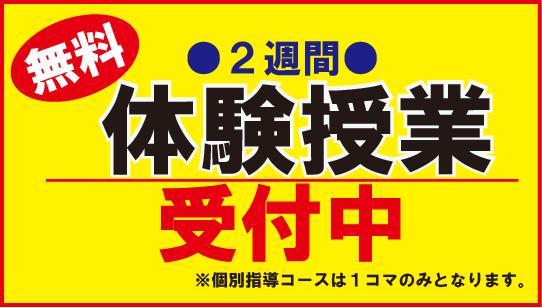 3月より大学受験コース 新学年スタート! 年長~高3・全コース 新規入塾者募集中!